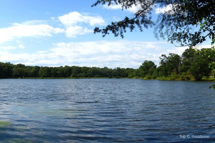 Greenbelt Park3