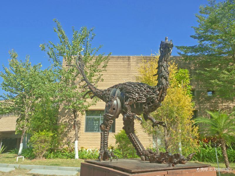 Dinosaur Fossil Gallery