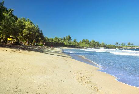 D.T. Fleming Beach Park