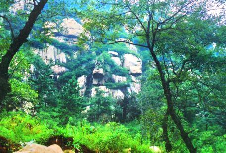 九龍國際文化生態旅遊園區