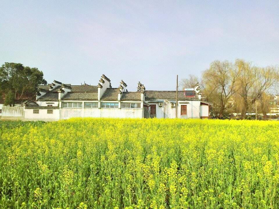 綠能生態園