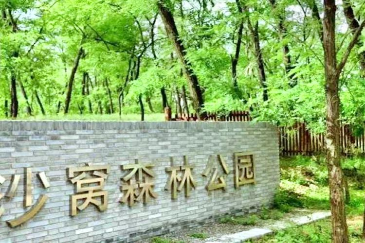 Shawo Forest Park
