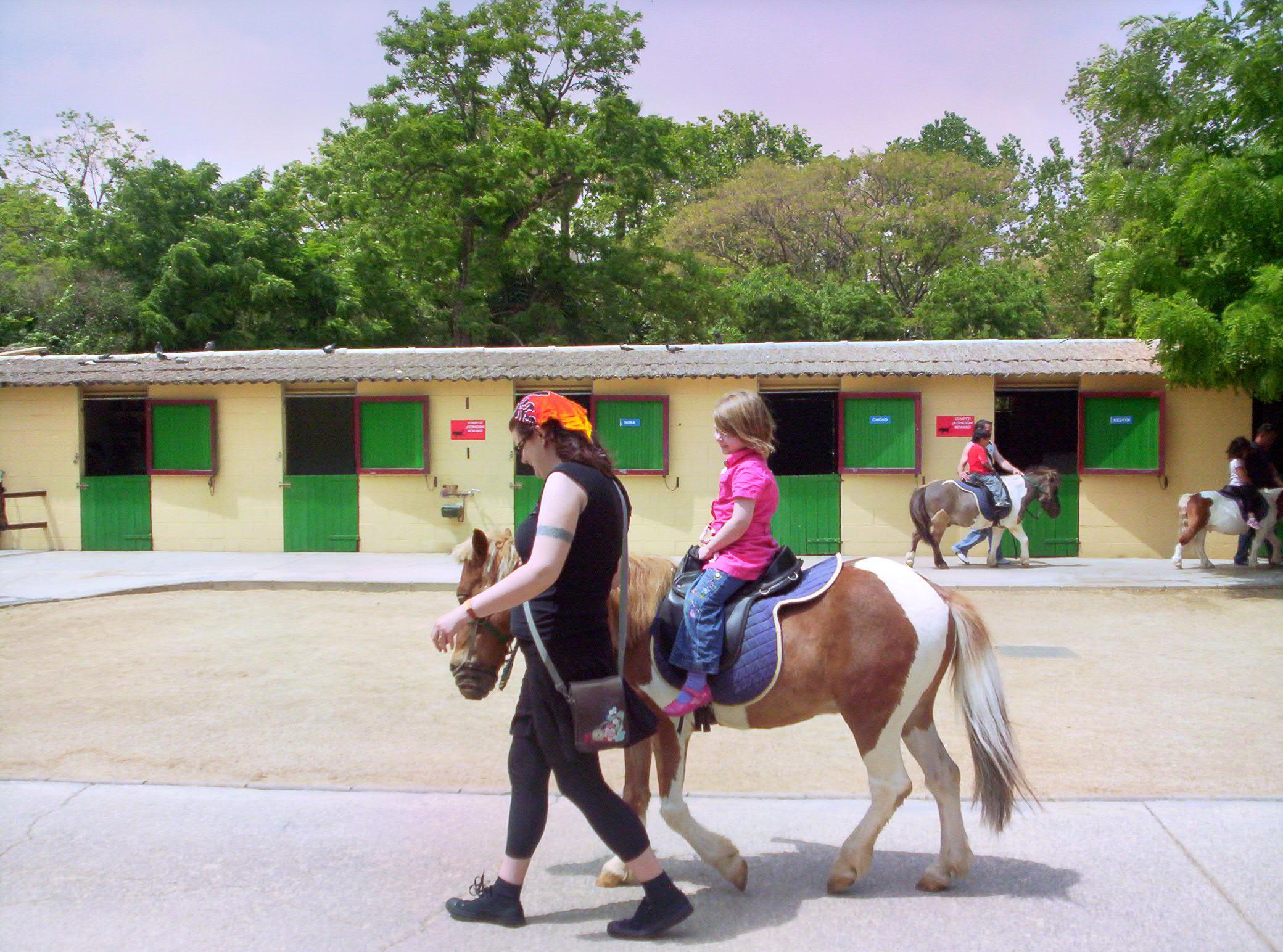 Hawkes Bay Farmyard Zoo