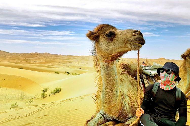 Tenggeli Desert4