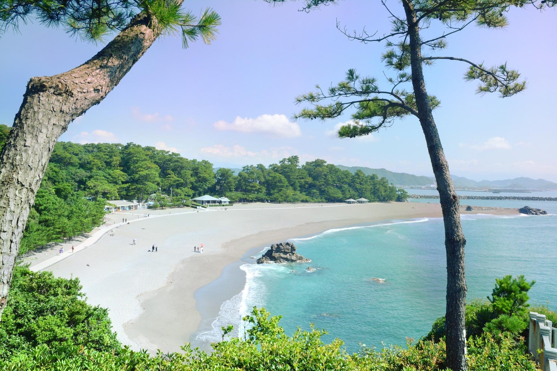 県 観光 スポット 高知