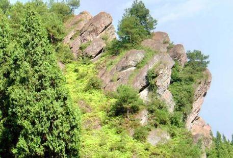 Sipsongpanna Monkey Mountain