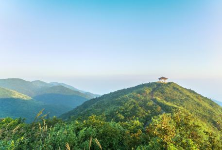 Dawei Mountain National Forest Park