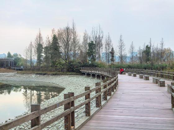 Guanyinhu Wetland Park