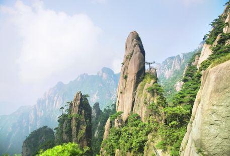 The Nanqingyuan Scenic Area