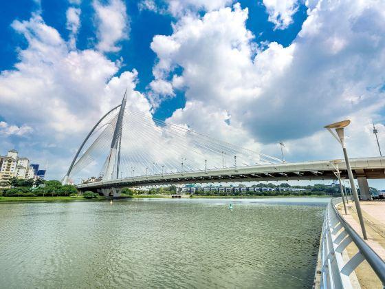 布城鋼索大橋