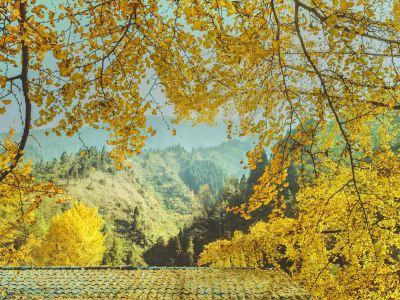 China Qiannian Yinxing Valley