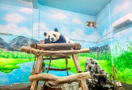 Liuzhou Zoo