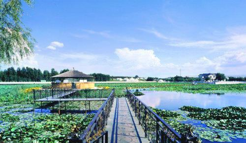 寧江森林公園