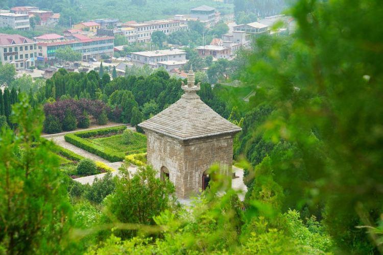 Simen Tower4