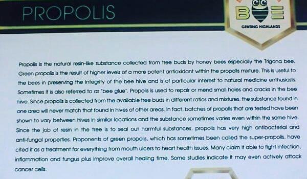 My Happy Bee Farm Restaurant
