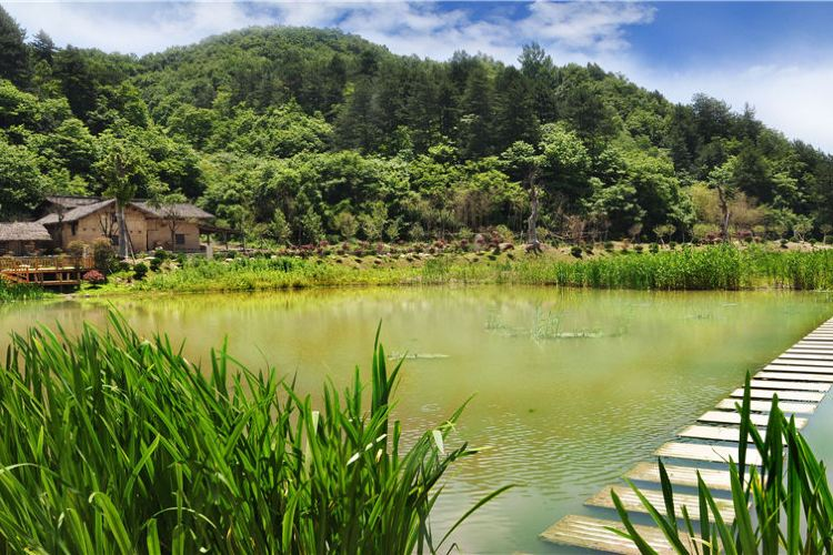 Mount Youran Alpine Wetlands Scenic Area, Qinling Mountains, Shaanxi Province1