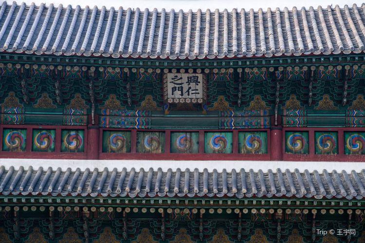 Dongdaemun4