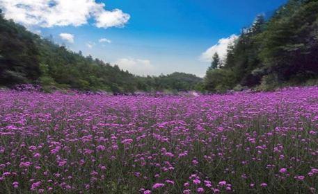 花千谷生態旅遊景區