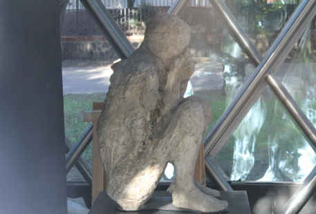 Museo Vesuviano