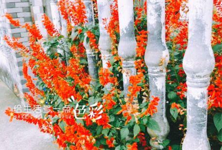 Fudanmingxi Botanical Garden