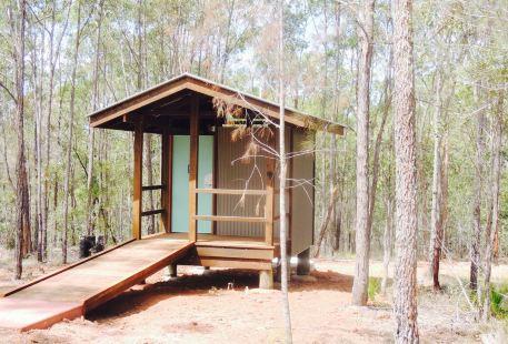 Promisedland Cordalba State Forest