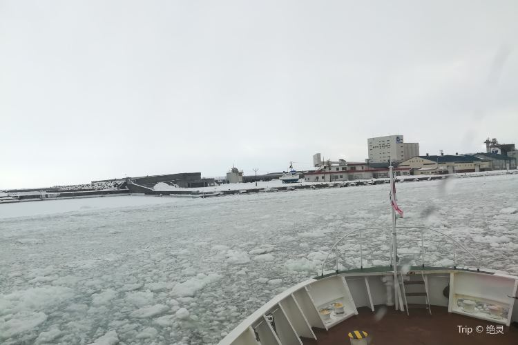 Abashiri Drift Ice Sightseeing & Icebreaker Ship4