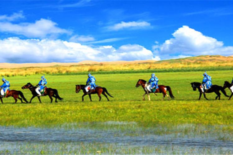 Tonghu Grassland4