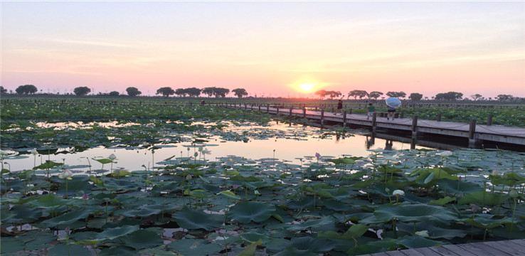 Jiaogang Lake National Wetland Park4