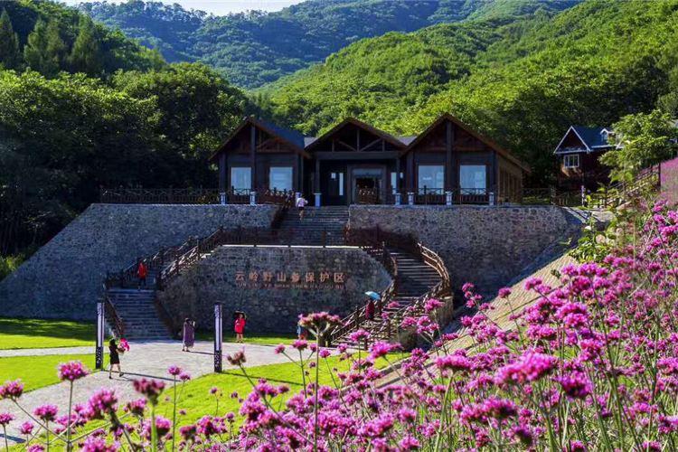 Yunlingye Shan Can Sceneic Area3