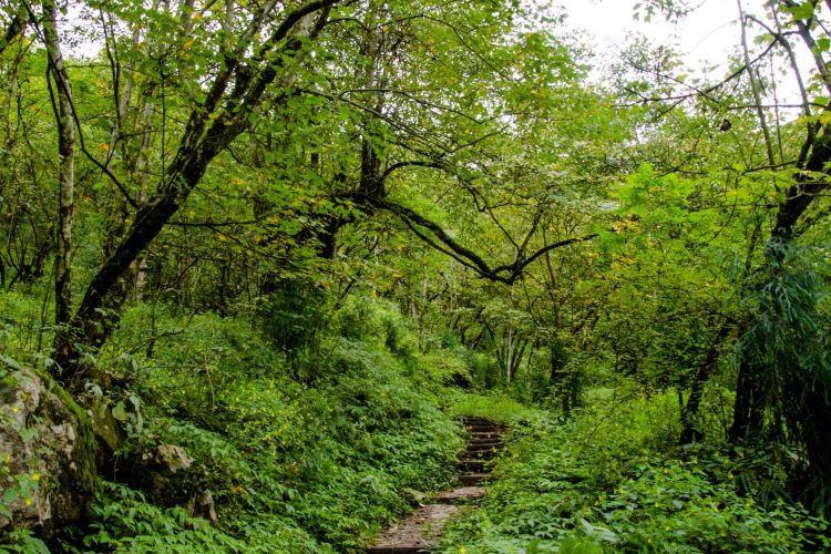 Jiufeng Mountain Scenic Area2