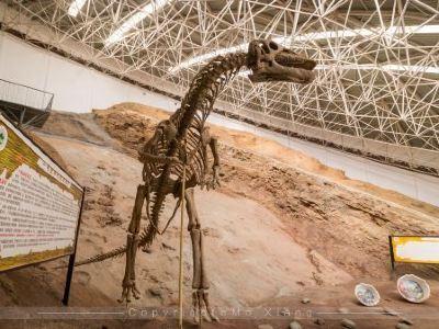 Liujiaxia Dinosaur National Geology Park