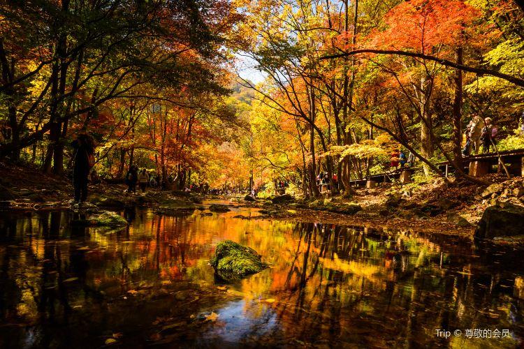 關門山國家森林公園1