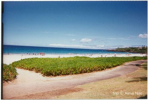 Hāpuna Beach State Recreation Area1