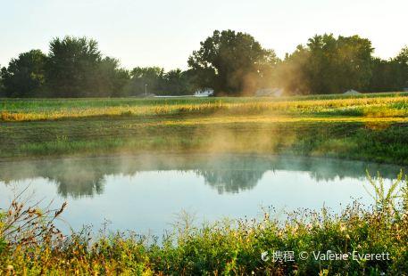 Sheep Pond Drive