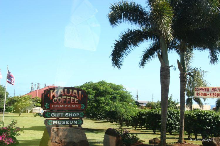 Kauai Coffee Company2