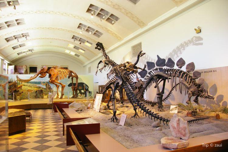 Natural History Museum of Utah3