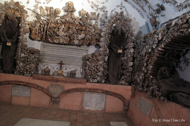 Museum and Crypt of Capuchins1