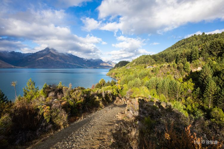 Glenorchy-Queenstown Road1