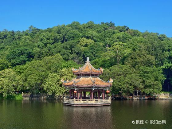 Mid-lake Pavilion