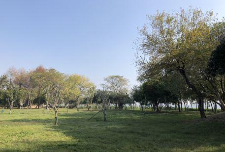 Yangmeizhou Water Park