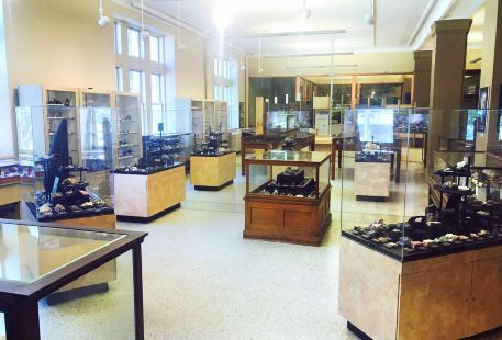 Miller Museum of Geology