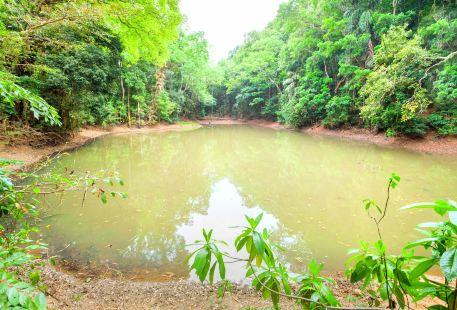 烏達瓦塔凱勒保護區
