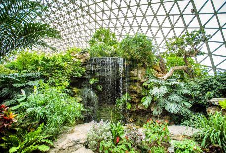 상하이 천산 식물원(상해 진산식물원)