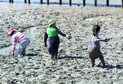 務安生態泥灘中心