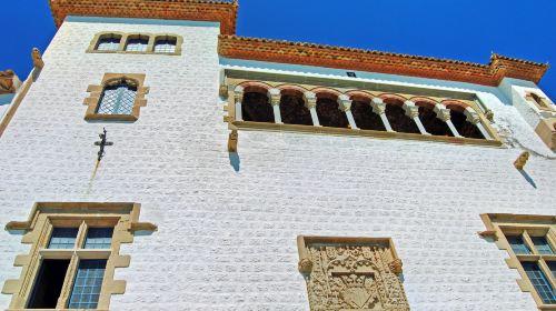 Cau Ferrat博物館