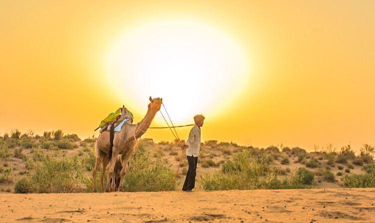 塔爾沙漠2