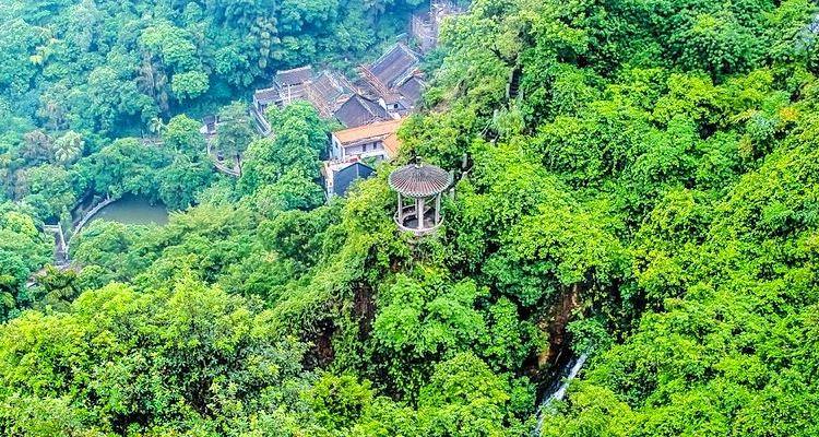 Nanhai Bay Forest Ecological Park1