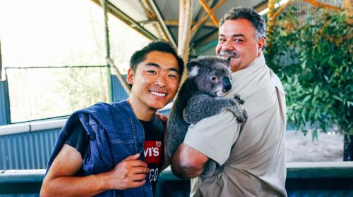 Billabong Koala and Wildlife Park