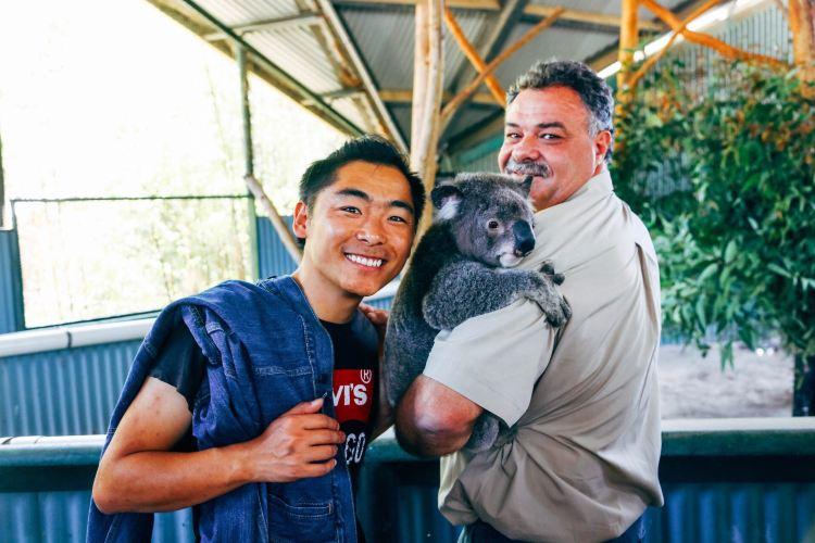 Billabong Koala and Wildlife Park3
