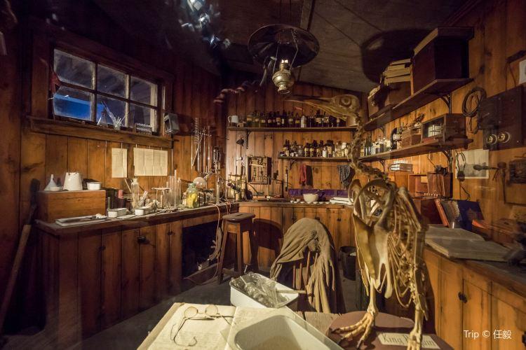 Kelly Tarlton's Antarctic Encounter & Underwater World2